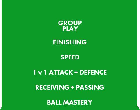 プレイヤー育成ピラミッド